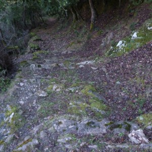 Le sentier qui reliait le hameau de Valle à Ponte Novu.